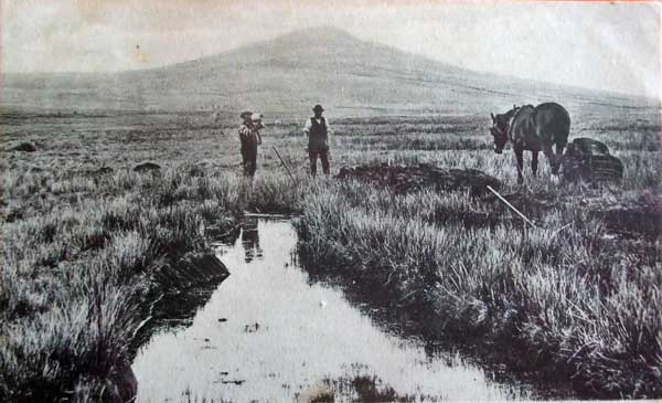 Peat cutting in the marshes below Bronn Wennili in 1905.