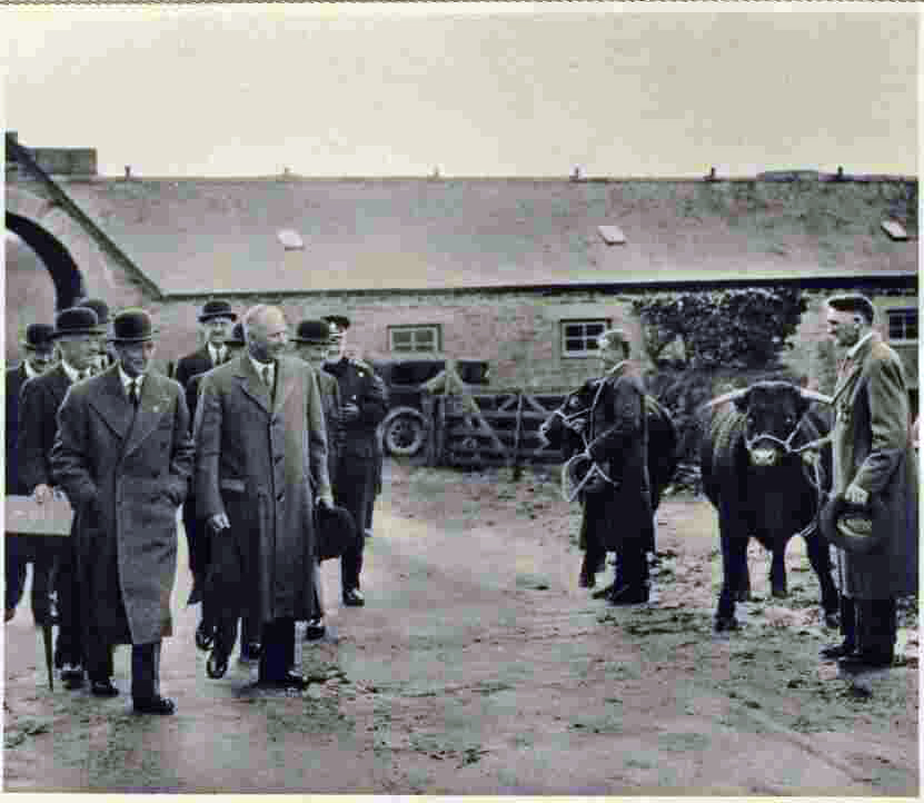 King George inspects cattle at his farm near Stoke Climsland in 1937.