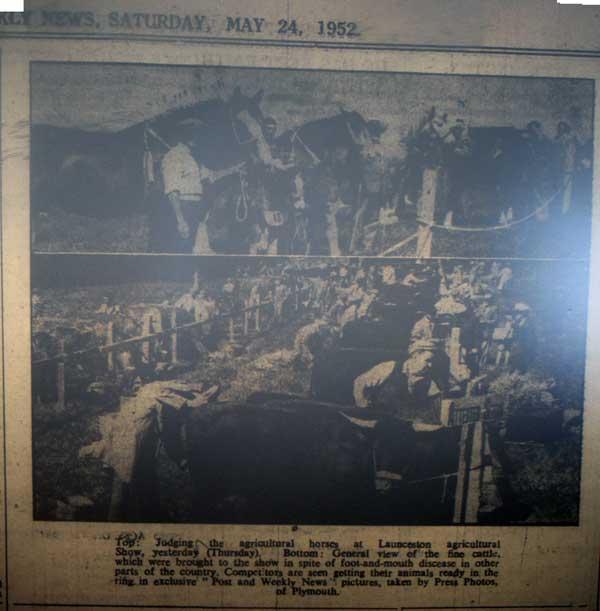 launceston-horse-show-1952