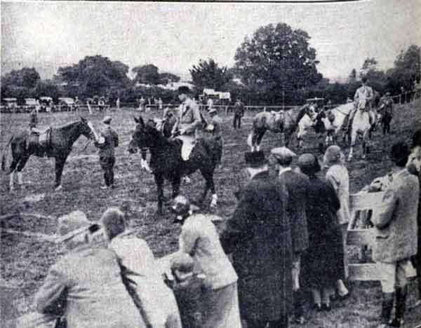 launceston-show-1932-spectators-watching-the-judging-of-hunters-and-hacks
