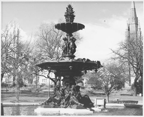 launceston-tasmania-fountain