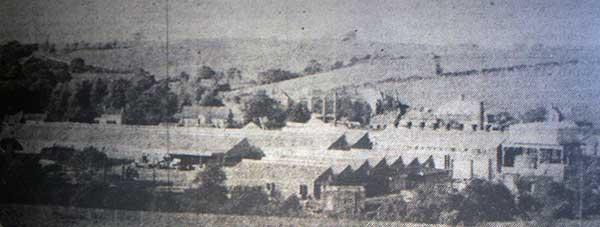Ambrosia in 1967.