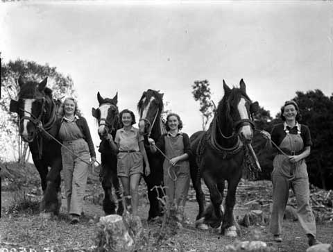 broadbridge-forestry-camp-for-women-at-boyton-bridge-1941