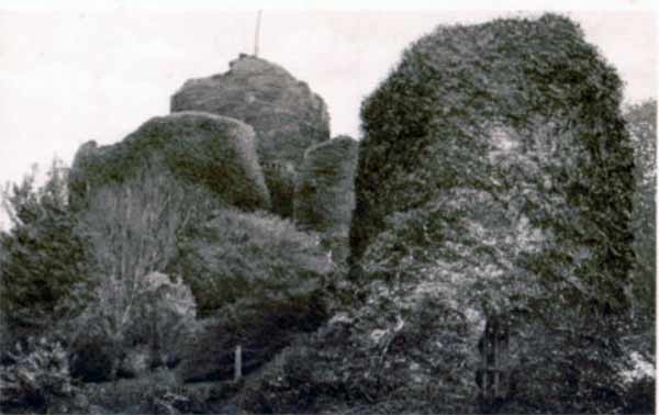 launceston-castle-covered-in-ivy