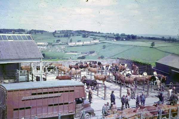 market-day-in-the-mid-1960s
