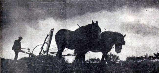 mr-a-s-radmore-at-barbaryball-lifton-1935