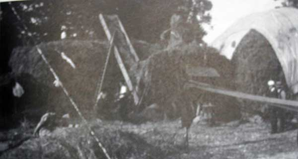 owen-jenkins-threshing-team-at-south-petherwin-in-the-1940s