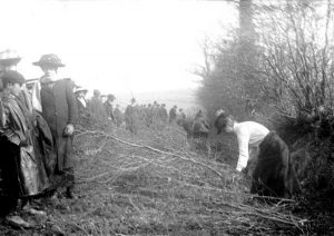 1915 Land Army demonstrations at Scarne