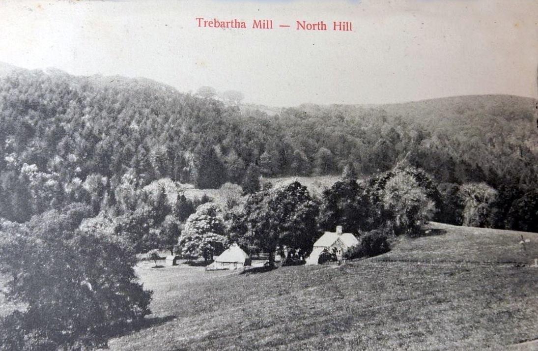 Trebartha Mill, North Hill c.1900's.