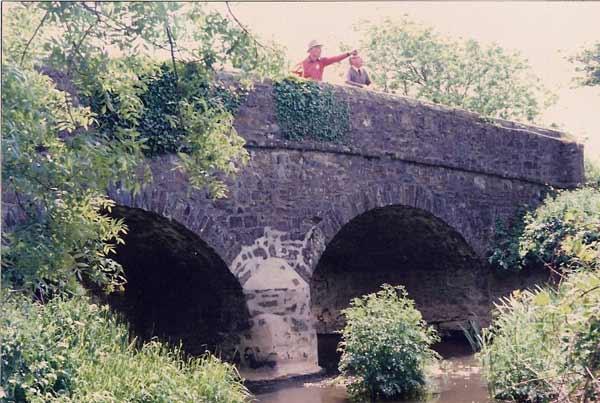 blackpool-bridge-garfield-spotted-a-yellow-hammer