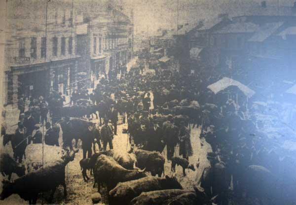 holsworthy-market-1903