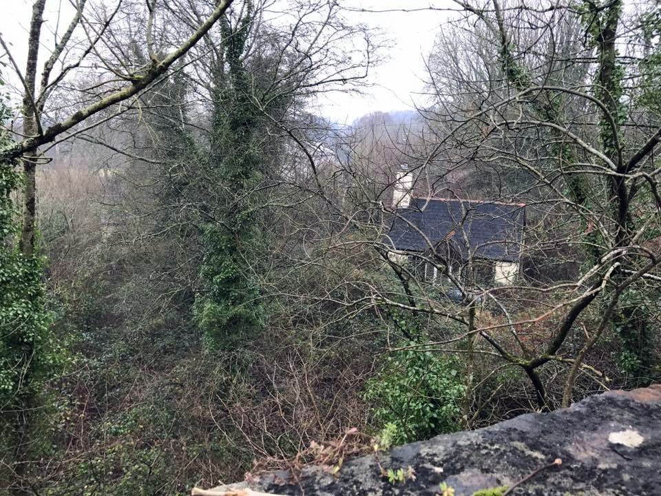 The old railway line at Leat Cottage, Lifton in December 2016. Photo courtesy of David Gomm.