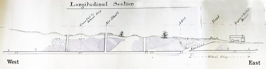 Treburland Mine Longtitudal