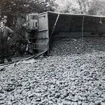 Accident when a artic carrying potatoes overturned on the A30 at Landerslake, Lewannick.