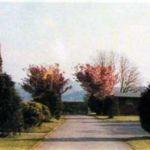 Trevadlock Holiday Park in 1985.